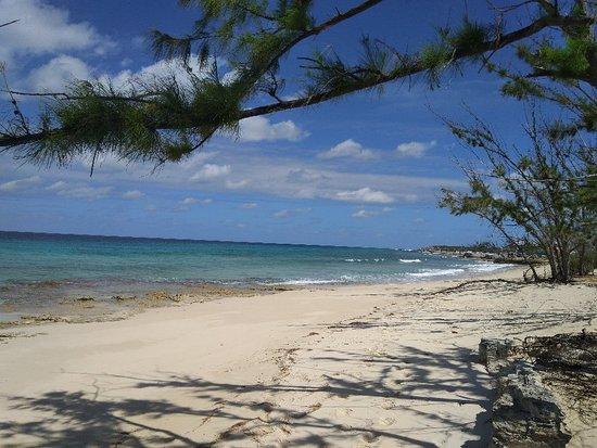 Salt Cay: IMG_20180325_110355_large.jpg