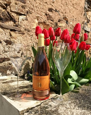 Châteaumeillant, France : We tasted and bought this Rosé - very nice