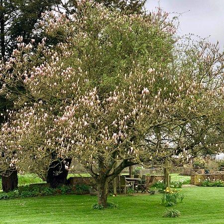 Bruton, UK: photo7.jpg