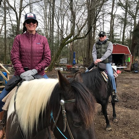 Greeneville, TN: Mustang Alley Horse Rescue Riding Stables