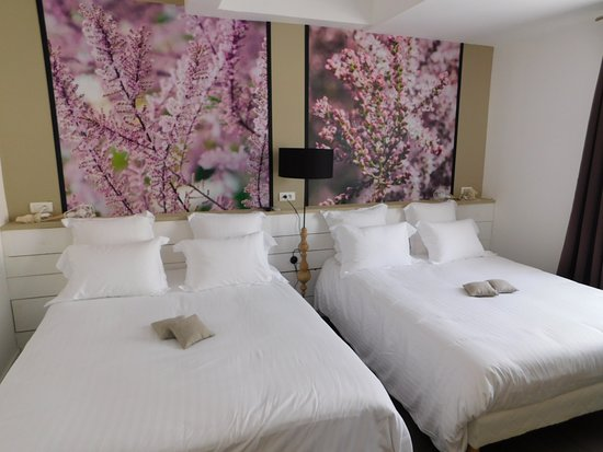 Hotel Chez Carriere, Hotels in Aigues-Mortes
