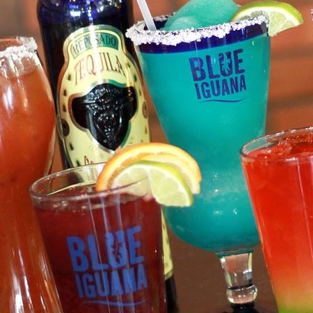 The Blue Iguana: Cocktails