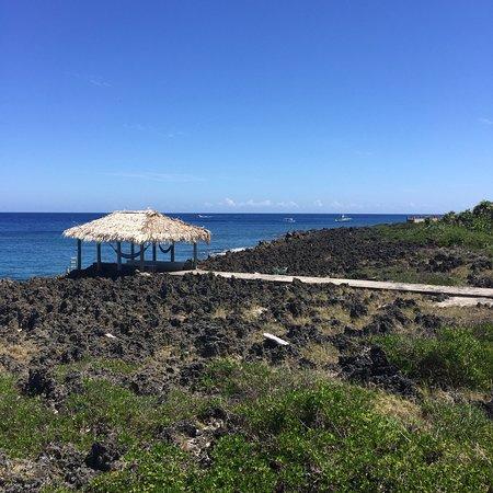 Seagrape Plantation Resort: photo2.jpg