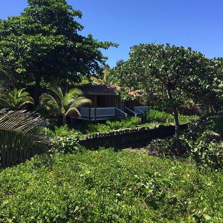Seagrape Plantation Resort: photo3.jpg
