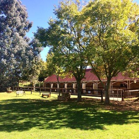 Millstream Farm
