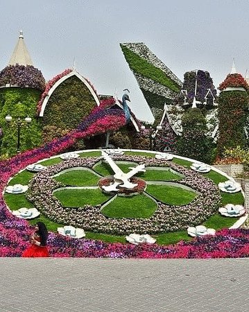 Dubai Miracle Garden – fénykép