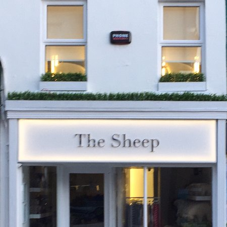 ‪The Sheep‬