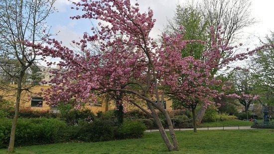 Img 20180413 194349 Large Jpg Picture Of Jardin Villemin Paris