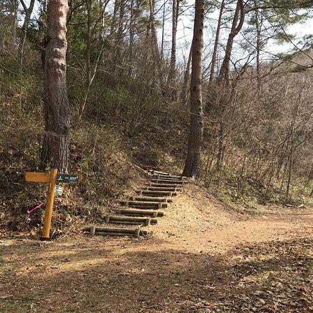 Shiojiri, Япония: 鳥居峠は藪原宿から奈良井宿へ抜ける中山道の途中にあります。馬も使えない難所と言われたルートです。
