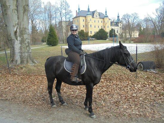 Osiecznica, Polonia: Horseback riding in Kliczkow