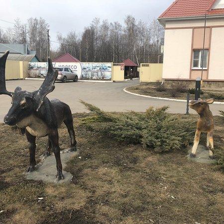 Kamenka, Russland: photo1.jpg