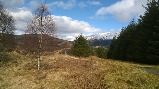 Duror, UK: View of snow capped hill from Glencoe woods