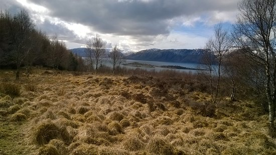 Duror, UK: Loch Linnhe from Glencoe woods