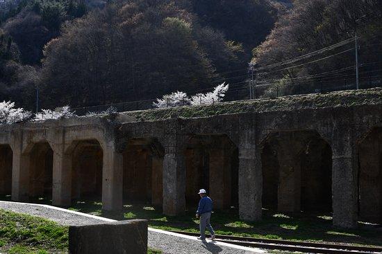 Oshi Station Remains