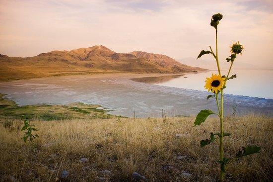 Davis County, UT: Fall sunset on Antelope Island State Park