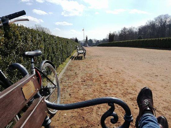 Park in Swierklaniec