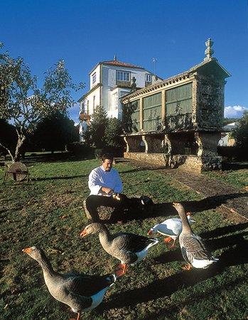 Vedra, Espanha: Roberto y compañía