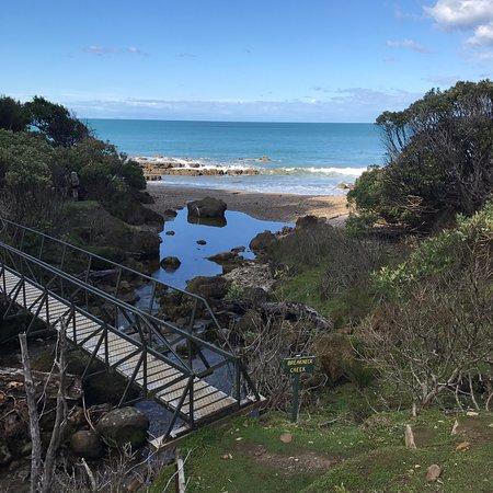 Tuatapere, New Zealand: photo8.jpg