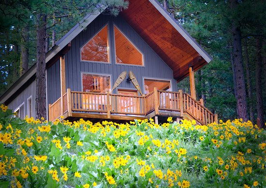 Mountain Home Lodge: Cabin Ponder Ro