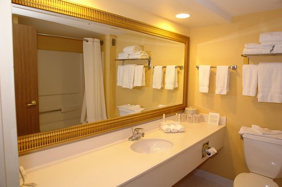Holiday Inn Express Pigeon Forge/Dollywood: Guest room amenity