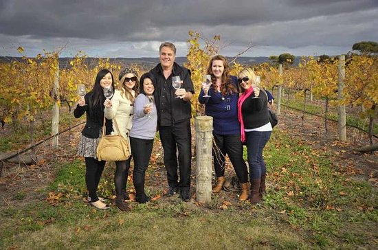 McLaren Vale Winery Small Group Tour from Adelaide, Wine Tasting and...
