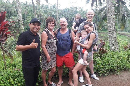 Excursão ao vulcão Ubud no Bali Zoo...