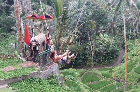 Ubud Rafting Bali Balançoire Riz...