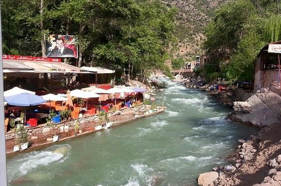 Ourika Valley Full-Day Trip from...