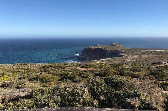 Cape Peninsula and Cape Point Private...