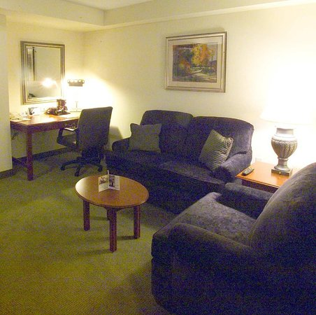 Hilton Garden Inn Detroit Downtown: Suite