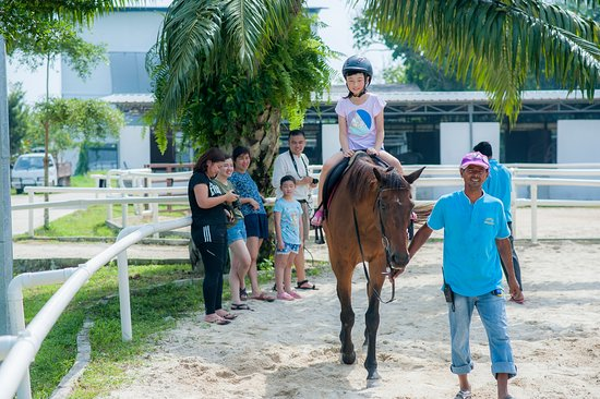 Pontian District, Malasia: Horse riding