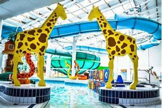 Basingstoke Aquadrome 2018 All You Need To Know Before You Go With Photos Tripadvisor