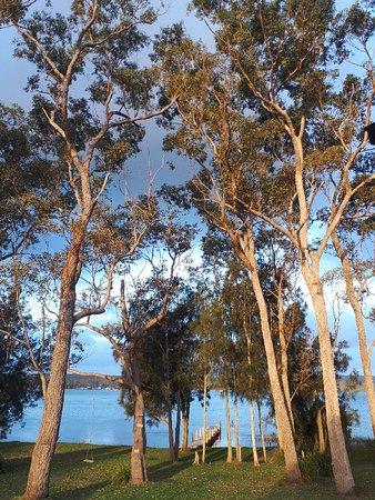 Sanctuary Point, Australia: 20180409_170528_large.jpg