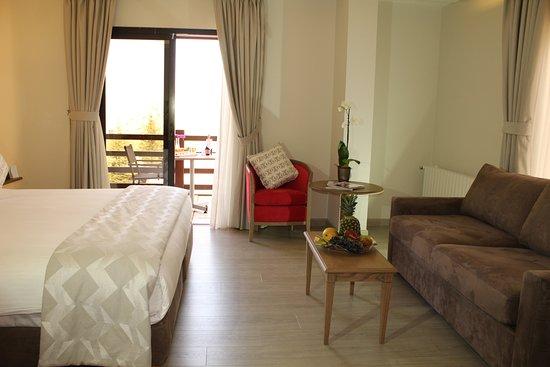 Kfardebian, Libanon: Studio Suite