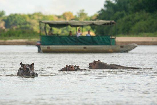Заповедник Селус, Танзания: Boat Safari