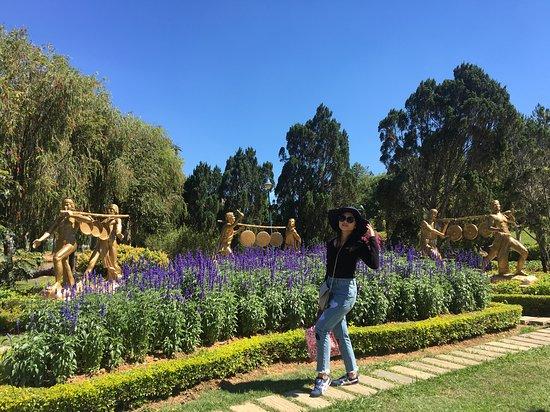 Dalat Flower Park Photo