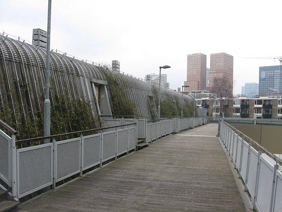 South Holland Province, The Netherlands: Las nuevas costrucciones