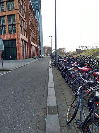 South Holland Province, The Netherlands: Y siempre las bicicletas
