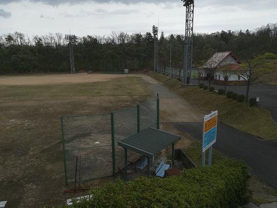 Yao Pine Park