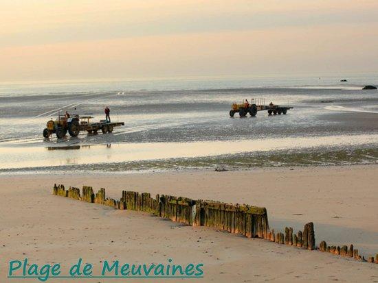 Foto de Meuvaines
