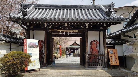 Sakuramotobo