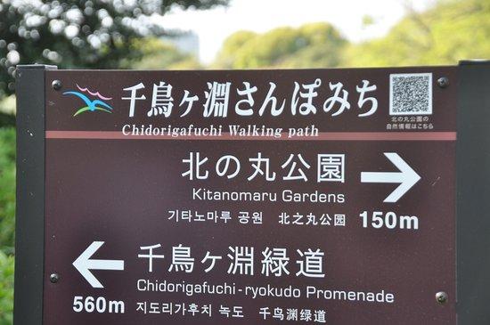 Chidorigafuchi Promenade