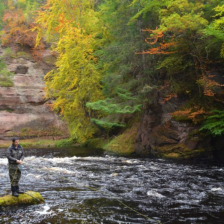 TroutQuest: Late October on the Alness