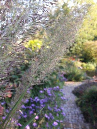 Kutzenhausen, Frankrike: Jardin des Quatre Temps