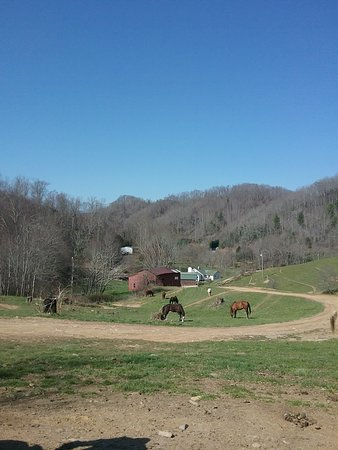 Valle Crucis, NC: Dutch Creek Trails