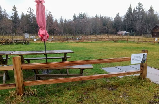 Sechelt, Canada: View of the outdoor seating area