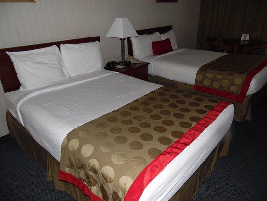 Strasburg, VA: DOUBLE BEDS