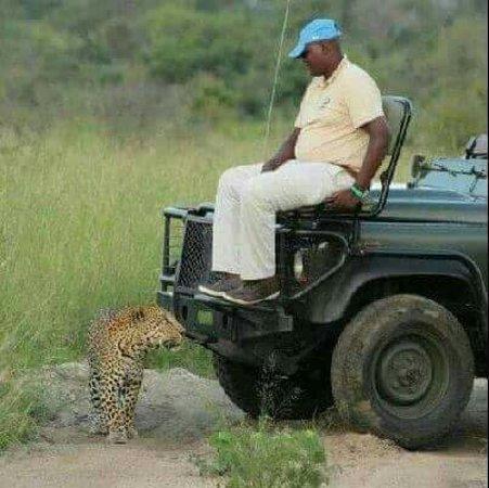 حديقة كروجر الوطنية, جنوب أفريقيا: Kruger National Park