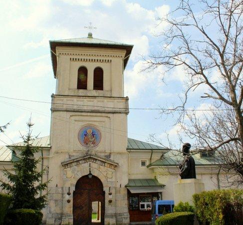 Manastirea Dealu: Main door