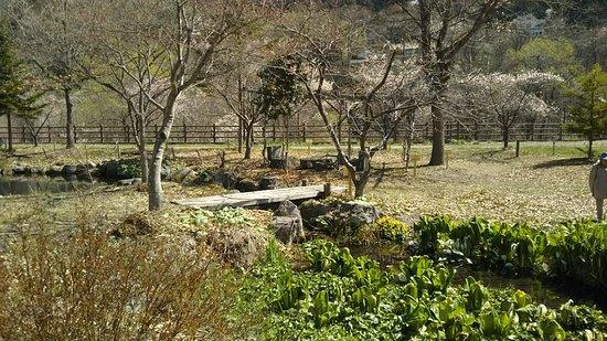 Oigami Wetland Park